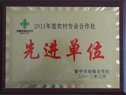 2011年度农村专业合作社先进单位